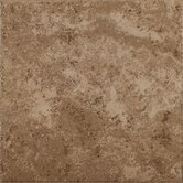 Shaw Floors Floor & Wall Tile
