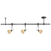 Lite Source Track Lighting