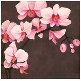 "Hand Painted Orchid Canvas Art - 28"" X 28"""