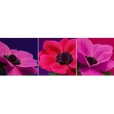 Jewel Florals Canvas (set of 3)