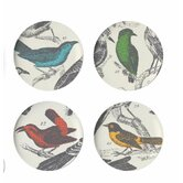 Ornithology Dessert Plate (Set of 4)