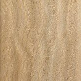 Coastal Living 12mm Sand Dollar Oak Laminate