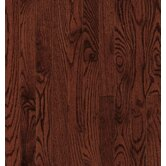 Dundee Strip 2-1/4&quot; Solid Red / White Oak in Cherry