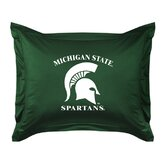 Michigan State University Sham
