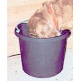 Farm Innovators Dog Bowls, Feeders & Accessories