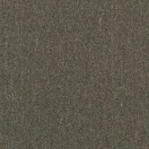 "Aladdin Voltage 24"" x 24"" Carpet Tile in Resources"