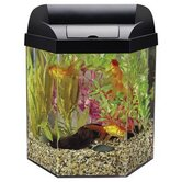 Eclipse Seamless Systems Hexagon Aquarium Kit in Black