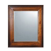 Palmer Rectangular Beveled Mirror in Light Woodtone