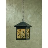 One Light Outdoor Pendant in Weathered Bronze