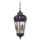 Berkshire  Outdoor Hanging Lantern in Bronze