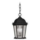 Hamilton Outdoor Hanging Lantern in Black