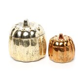 Chandler Mercury Glass Pumpkins (Set of 2)