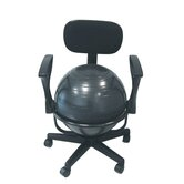 Adjustable Ball Chair with Back