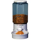 Auto Pet Feeder