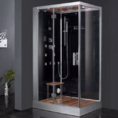 Platinum Pivot Door Steam Shower