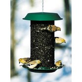 Magnum Sunflower Feeder in Green