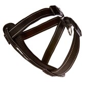 EzyDog Dog Leashes, Collars & Harnesses