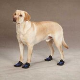 X-Treme Weather Dog Boot