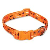Spooky Dog Collar