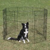 Exercise Dog Pen in Black