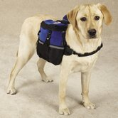 Neoprene Day Dog Tripper