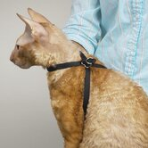 Adjustable Nylon Grooming Cat Harness