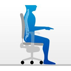 Ergonomic Seating Posture