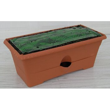 Garden Patch Growbox Rectangular Planter Reviews Wayfair