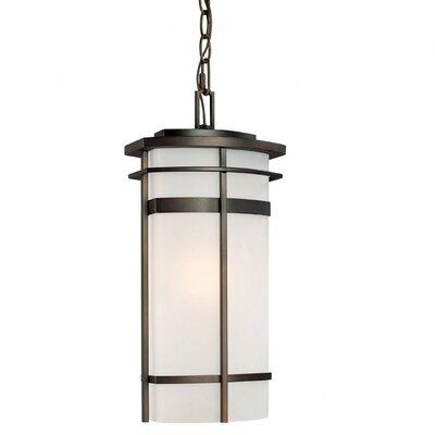 Capital Lighting Lakeshore 1 Light Outdoor Hanging Lantern