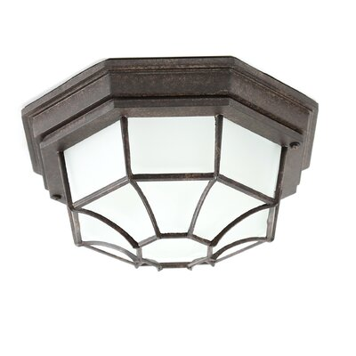 Capital Lighting 2 Light Outdoor Flush Mount & Reviews