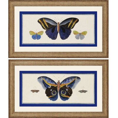 Bleu Papillion II by Burney 2 Piece Framed Graphic Art Set