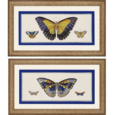 Bleu Papillion I by Burney 2 Piece Framed Graphic Art Set