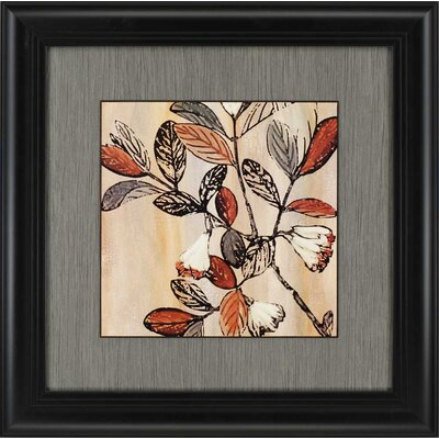 Nature's Graphic I by King Framed Painting Print