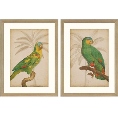 Parrot and Palm 2 Piece Framed Painting Print Set