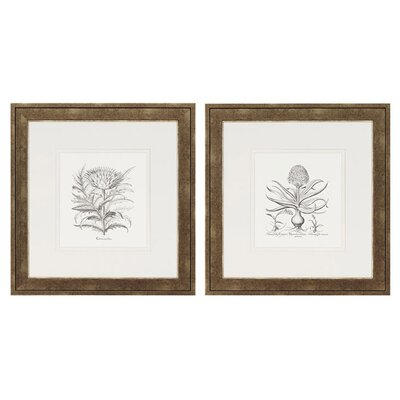 Flower Impressions Hyacinthus/Cinera Framed Print (Set of 2)