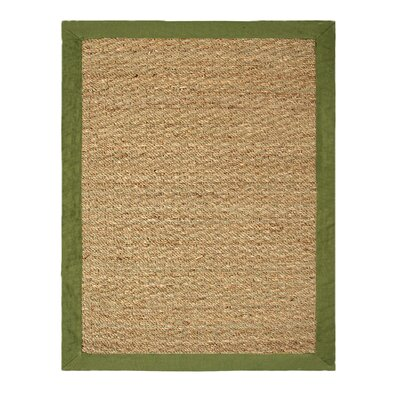Chesapeake Merchandising Inc. Seagrass Sage Rug