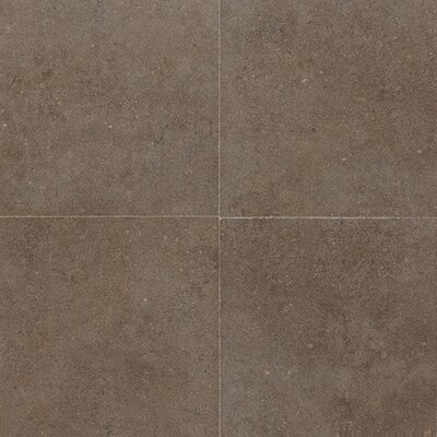 "Daltile City View 24"" x 2"" Linear Tile in Neighborhood Park"