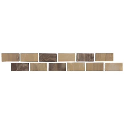 "Daltile San Michele 12"" x 2"" Decorative Accent in Moka"