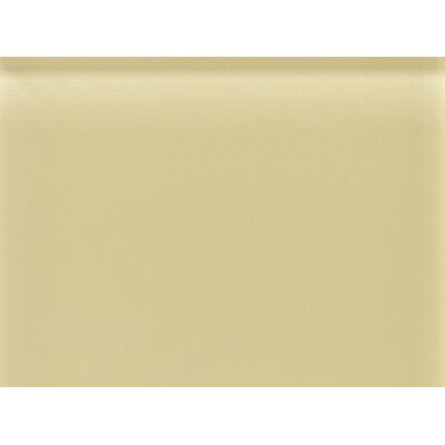 "Daltile Glass Reflections 11-1/2"" x 15-1/2"" Frosted Random Interlocking Accent in Cream Soda"