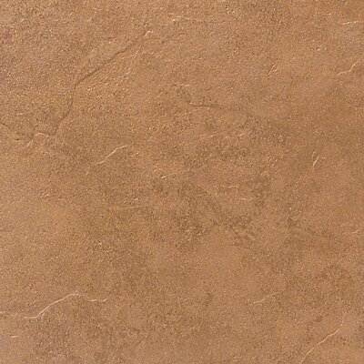"Daltile Cliff Pointe 18"" x 18"" Porcelain Field Tile in Redwood"