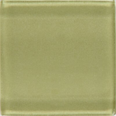 "Daltile Isis 1"" x 1"" Glass Mosaic Tile in Kiwi"
