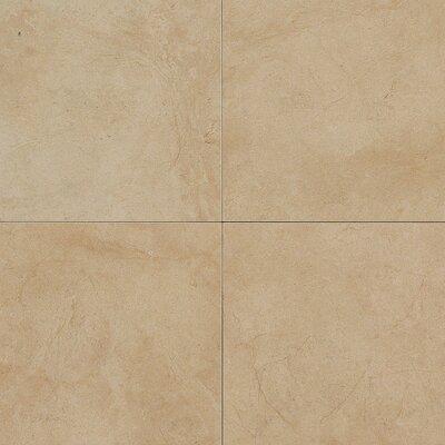 """Daltile Monticito 18"""" x 18"""" Plain Field Tile in Brune"""