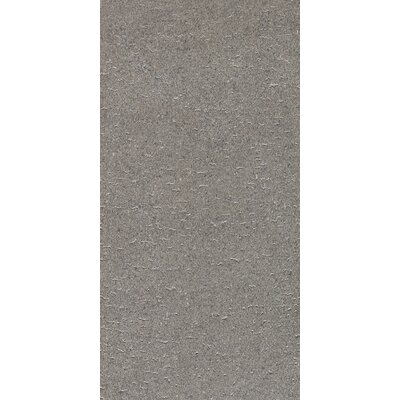 "Daltile Magma 12"" x 24"" Light Polished Field Tile in Flat Element"