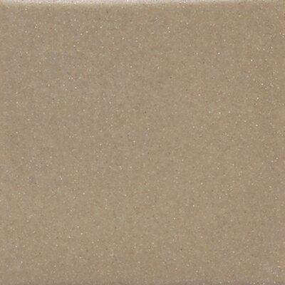 "Daltile Modern Dimensions 4"" x 2"" Plain Ceramic Mosaic Tile in Elemental Tan"