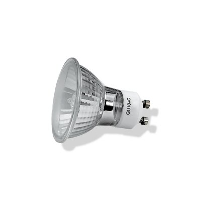 Royal Pacific 35W GU10 Flood Light