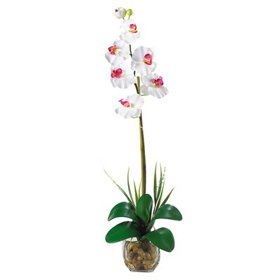 <strong>Nearly Natural</strong> Liquid Illusion Single Phalaenopsis Silk Orchid Arrangement in White