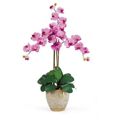 Triple Phalaenopsis Silk Orchid Arrangement in Mauve