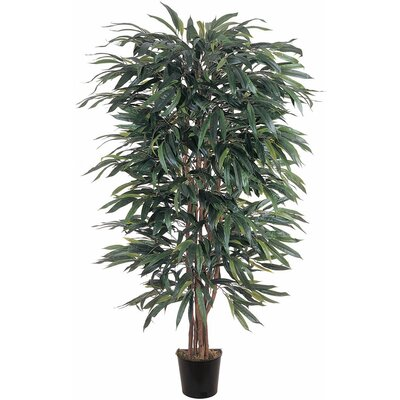 Silk Weeping Ficus Tree in Pot