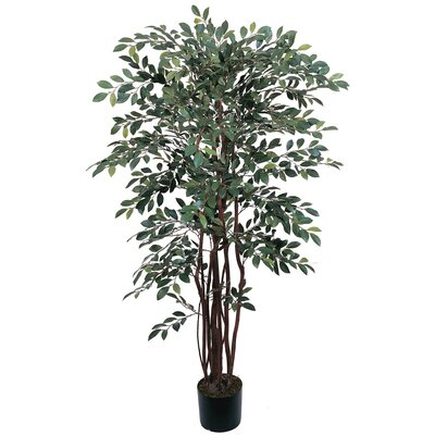 "Nearly Natural 48"" Silk Ruscus Tree in Green"