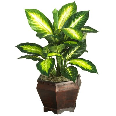 Nearly Natural Silk Golden Dieffenbachia Desk Top Plant in Planter